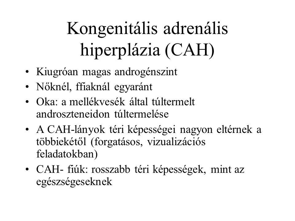 Kongenitális adrenális hiperplázia (CAH) Kiugróan magas androgénszint Nőknél, ffiaknál egyaránt Oka: a mellékvesék által túltermelt androszteneidon túltermelése A CAH-lányok téri képességei nagyon eltérnek a többiekétől (forgatásos, vizualizációs feladatokban) CAH- fiúk: rosszabb téri képességek, mint az egészségeseknek