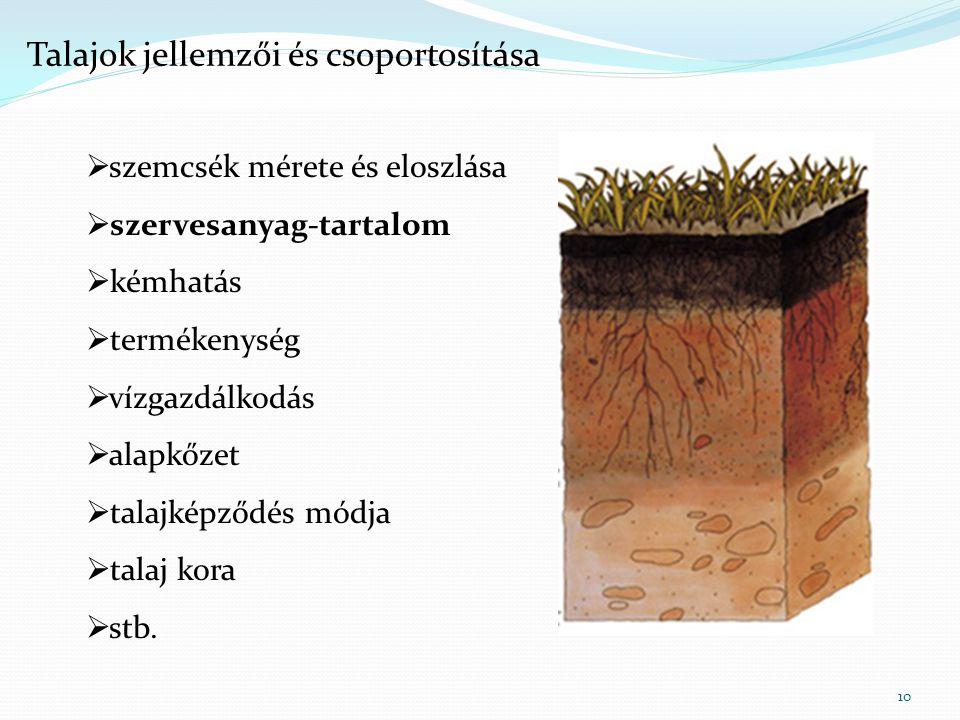 10  szemcsék mérete és eloszlása  szervesanyag-tartalom  kémhatás  termékenység  vízgazdálkodás  alapkőzet  talajképződés módja  talaj kora 