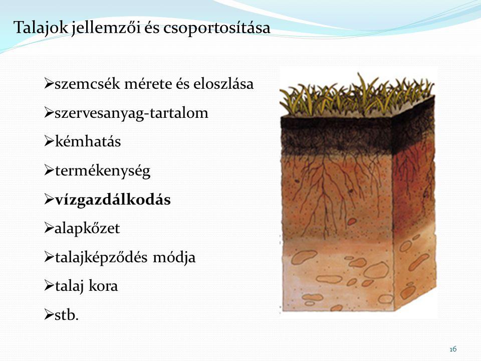 16  szemcsék mérete és eloszlása  szervesanyag-tartalom  kémhatás  termékenység  vízgazdálkodás  alapkőzet  talajképződés módja  talaj kora 