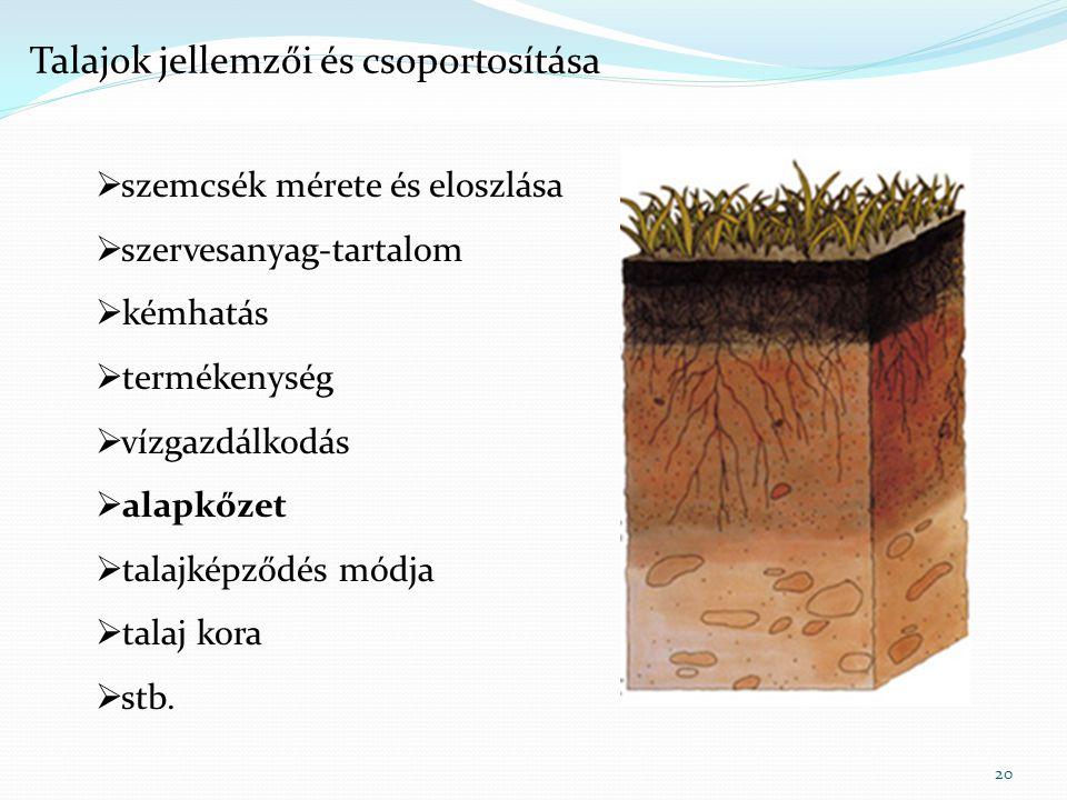 20  szemcsék mérete és eloszlása  szervesanyag-tartalom  kémhatás  termékenység  vízgazdálkodás  alapkőzet  talajképződés módja  talaj kora 