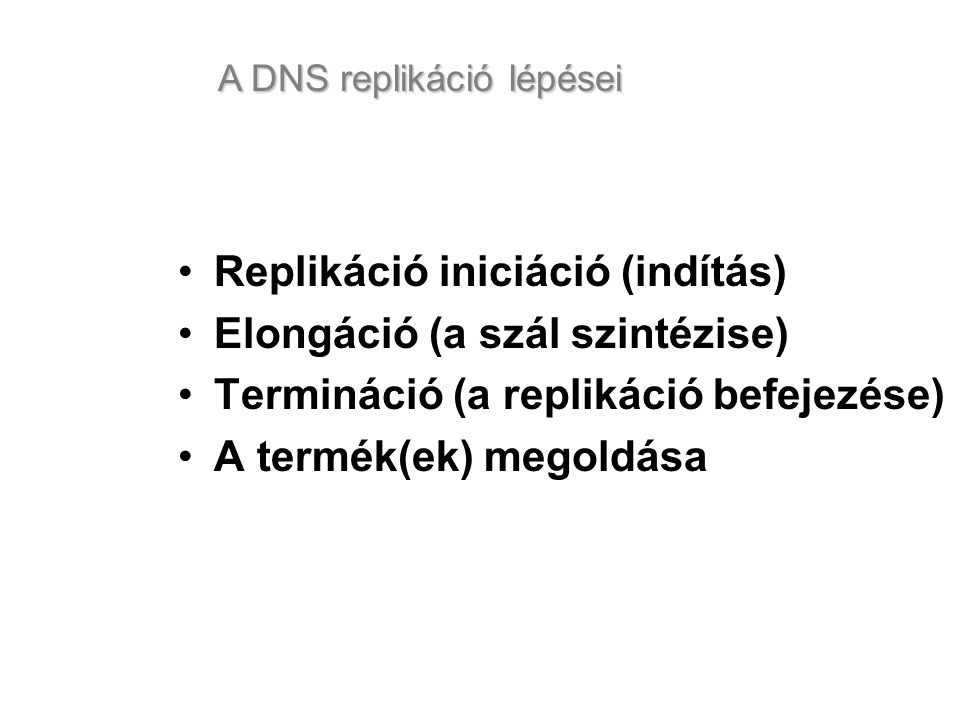 Replikáció iniciáció (indítás) Elongáció (a szál szintézise) Termináció (a replikáció befejezése) A termék(ek) megoldása A DNS replikáció lépései