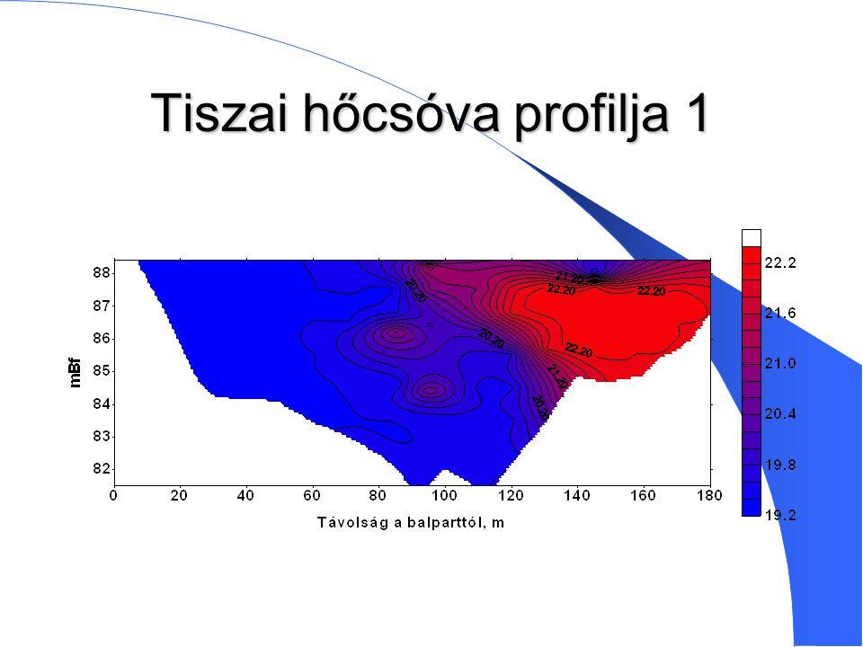 Tiszai hőcsóva profilja 1
