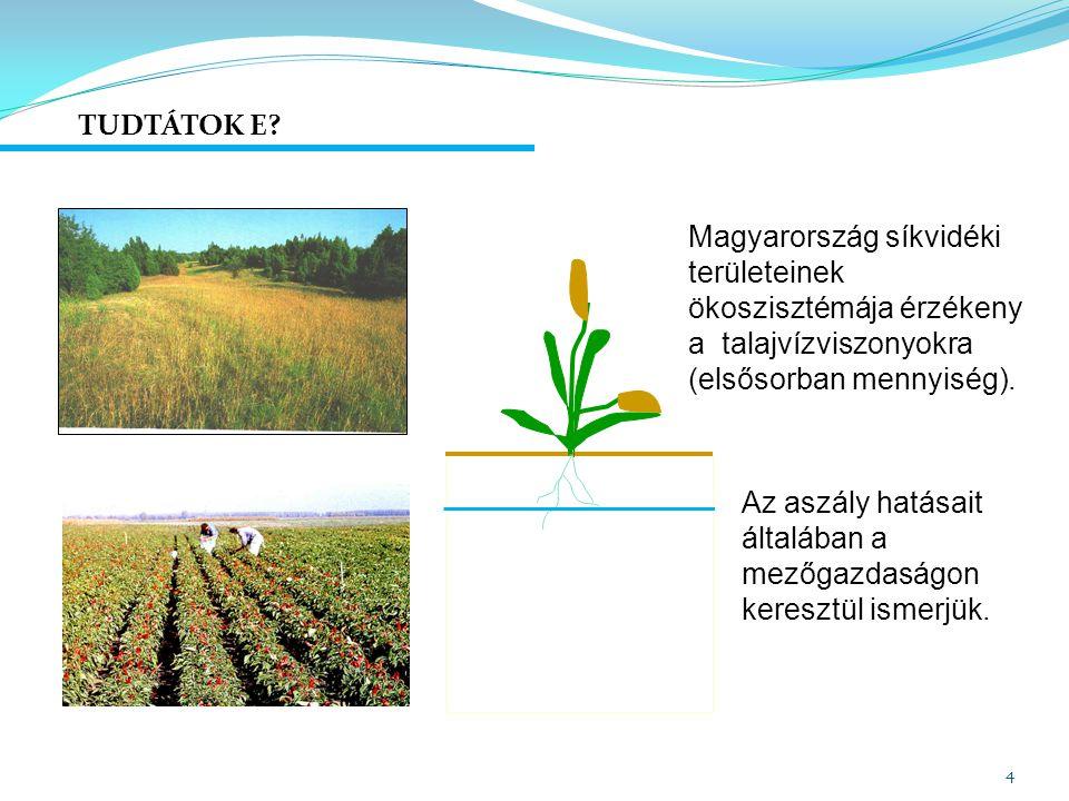 Telítetlen zóna: talajvízforgalmi típusok 15 Talajvizet ELÉRI szennyezés.