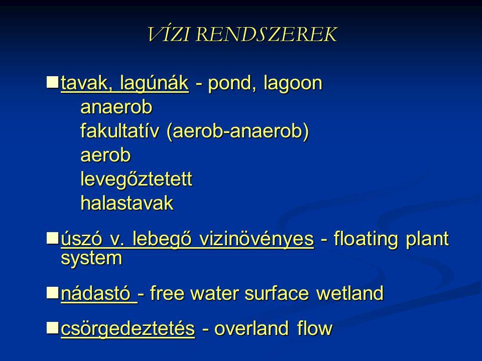 VÍZI RENDSZEREK tavak, lagúnák - pond, lagoon tavak, lagúnák - pond, lagoonanaerob fakultatív (aerob-anaerob) aeroblevegőztetetthalastavak úszó v. leb