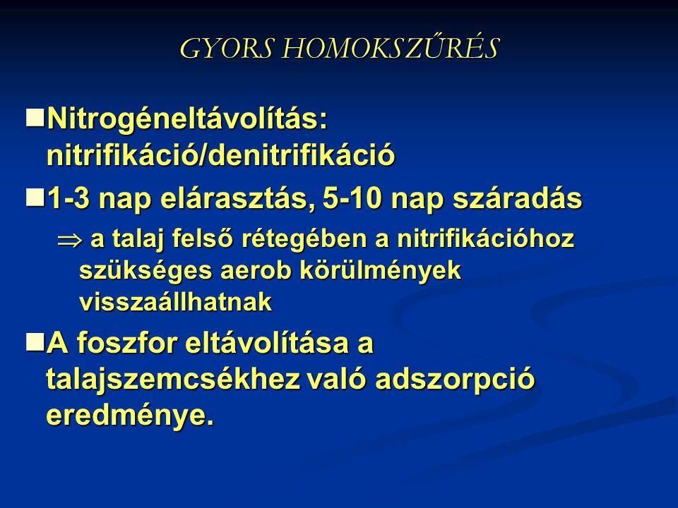 GYORS HOMOKSZŰRÉS Nitrogéneltávolítás: nitrifikáció/denitrifikáció Nitrogéneltávolítás: nitrifikáció/denitrifikáció 1-3 nap elárasztás, 5-10 nap szára