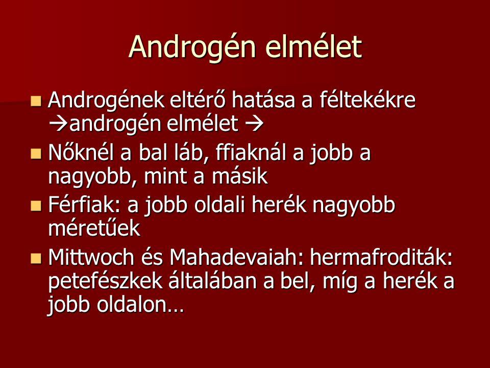Androgén elmélet Androgének eltérő hatása a féltekékre  androgén elmélet  Androgének eltérő hatása a féltekékre  androgén elmélet  Nőknél a bal lá