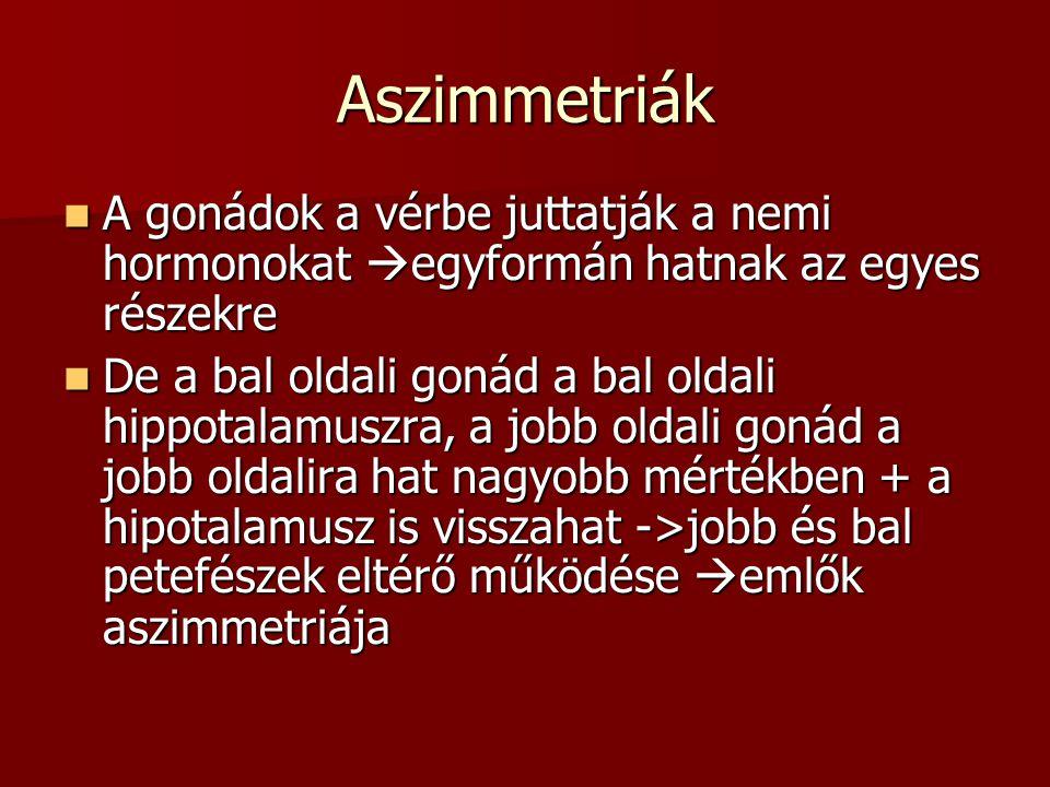 Aszimmetriák A gonádok a vérbe juttatják a nemi hormonokat  egyformán hatnak az egyes részekre A gonádok a vérbe juttatják a nemi hormonokat  egyfor