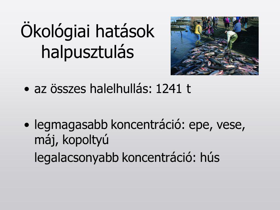 Ökológiai hatások halpusztulás az összes halelhullás: 1241 t legmagasabb koncentráció: epe, vese, máj, kopoltyú legalacsonyabb koncentráció: hús