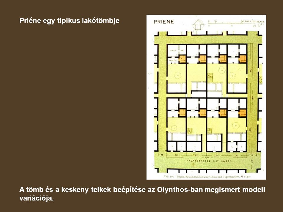 A tömb és a keskeny telkek beépítése az Olynthos-ban megismert modell variációja.