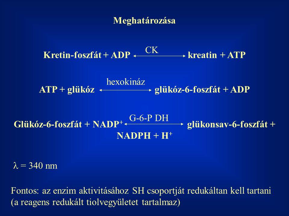 Meghatározása Kretin-foszfát + ADPkreatin + ATP ATP + glükózglükóz-6-foszfát + ADP Glükóz-6-foszfát + NADP + glükonsav-6-foszfát + NADPH + H + CK hexo