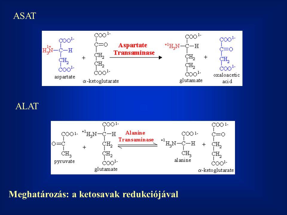 ASAT ALAT Meghatározás: a ketosavak redukciójával