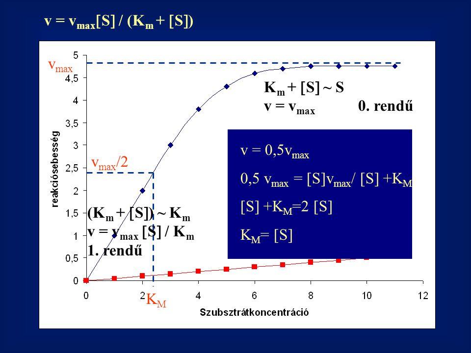 Akkor lineáris az enzimreakció, ha 0.rendű szakaszban mérünk.