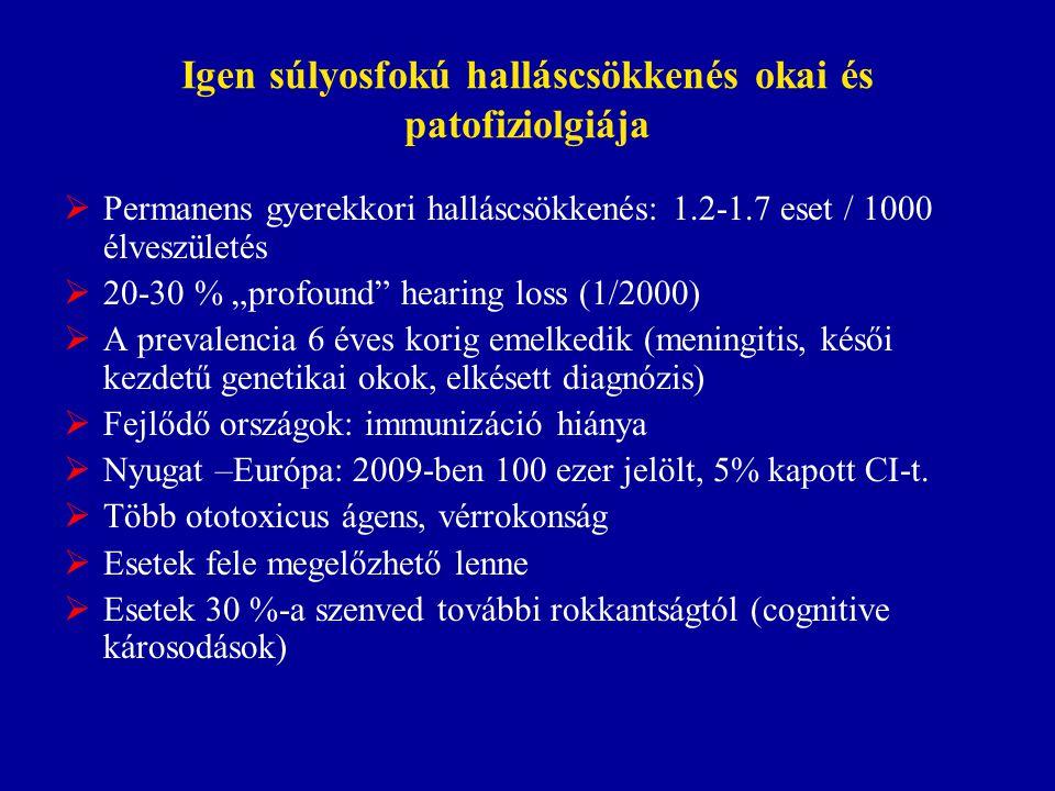 """Igen súlyosfokú halláscsökkenés okai és patofiziolgiája  Permanens gyerekkori halláscsökkenés: 1.2-1.7 eset / 1000 élveszületés  20-30 % """"profound"""""""