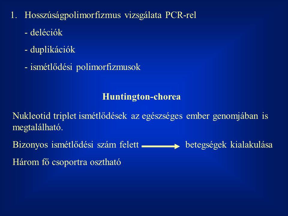 1.Hosszúságpolimorfizmus vizsgálata PCR-rel - deléciók - duplikációk - ismétlődési polimorfizmusok Huntington-chorea Nukleotid triplet ismétlődések az