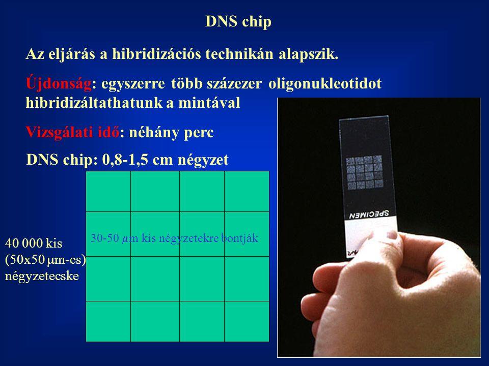 DNS chip Az eljárás a hibridizációs technikán alapszik. Újdonság: egyszerre több százezer oligonukleotidot hibridizáltathatunk a mintával Vizsgálati i