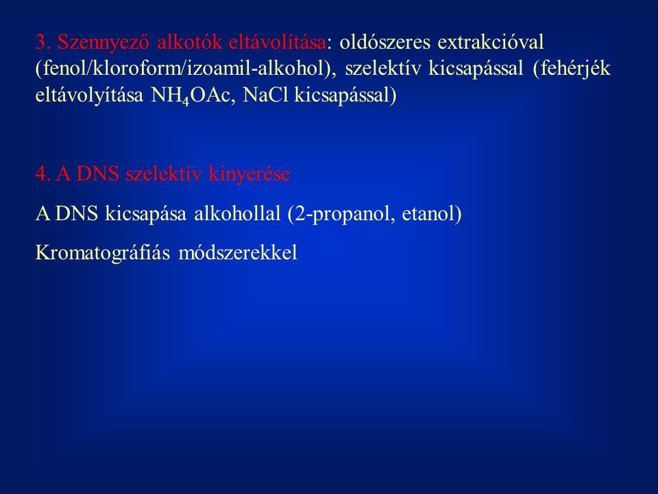 3. Szennyező alkotók eltávolítása: oldószeres extrakcióval (fenol/kloroform/izoamil-alkohol), szelektív kicsapással (fehérjék eltávolyítása NH 4 OAc,