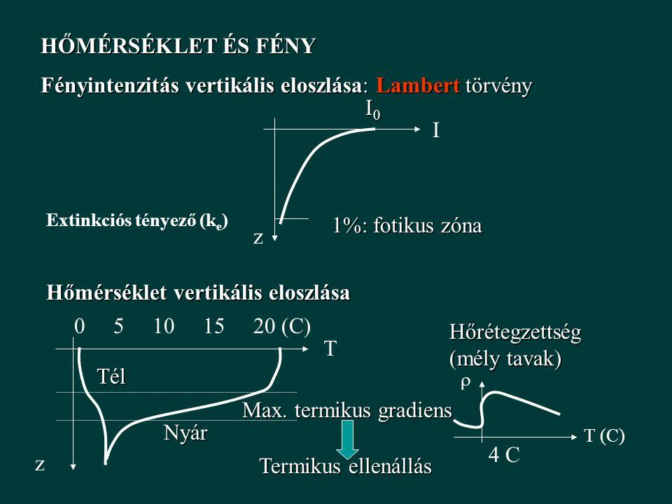 Fényintenzitás vertikális eloszlása: Lambert törvény HŐMÉRSÉKLET ÉS FÉNY z I I0I0I0I0 1%: fotikus zóna z T Hőmérséklet vertikális eloszlása 0 5 10 15 20 (C) Nyár Tél Hőrétegzettség (mély tavak) T (C)  4 C Max.