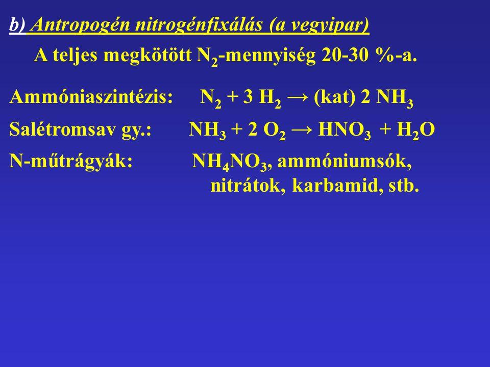 b) Antropogén nitrogénfixálás (a vegyipar) A teljes megkötött N 2 -mennyiség 20-30 %-a. Ammóniaszintézis: N2 N2 + 3 H2 H2 → (kat) 2 NH 3 Salétromsav g