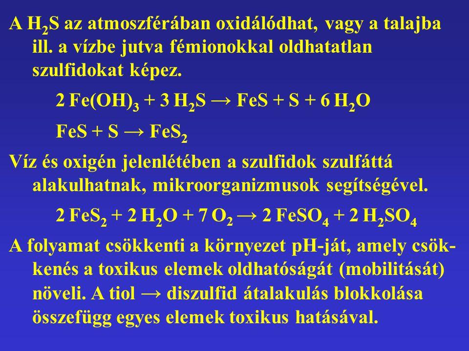 A H 2 S az atmoszférában oxidálódhat, vagy a talajba ill. a vízbe jutva fémionokkal oldhatatlan szulfidokat képez. 2 Fe(OH) 3 + 3 H 2 S → FeS + S + 6