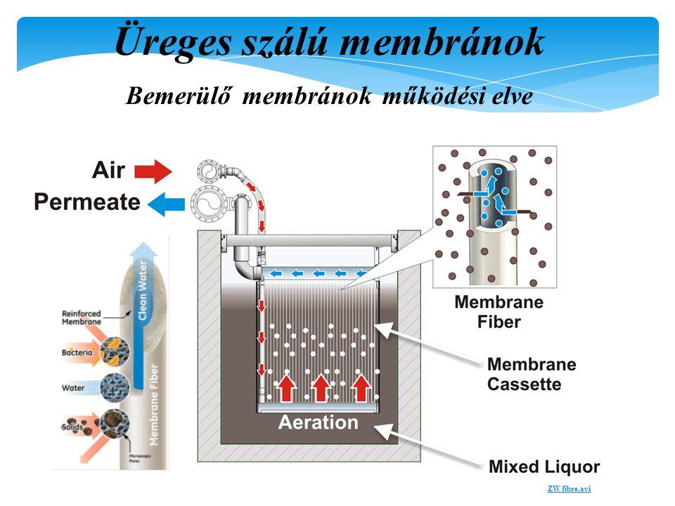 ZeeWeed ® 500 Flow Diagram Üreges szálú membránok Bemerülő membránok működési elve..ZW fibre.aviZW fibre.avi