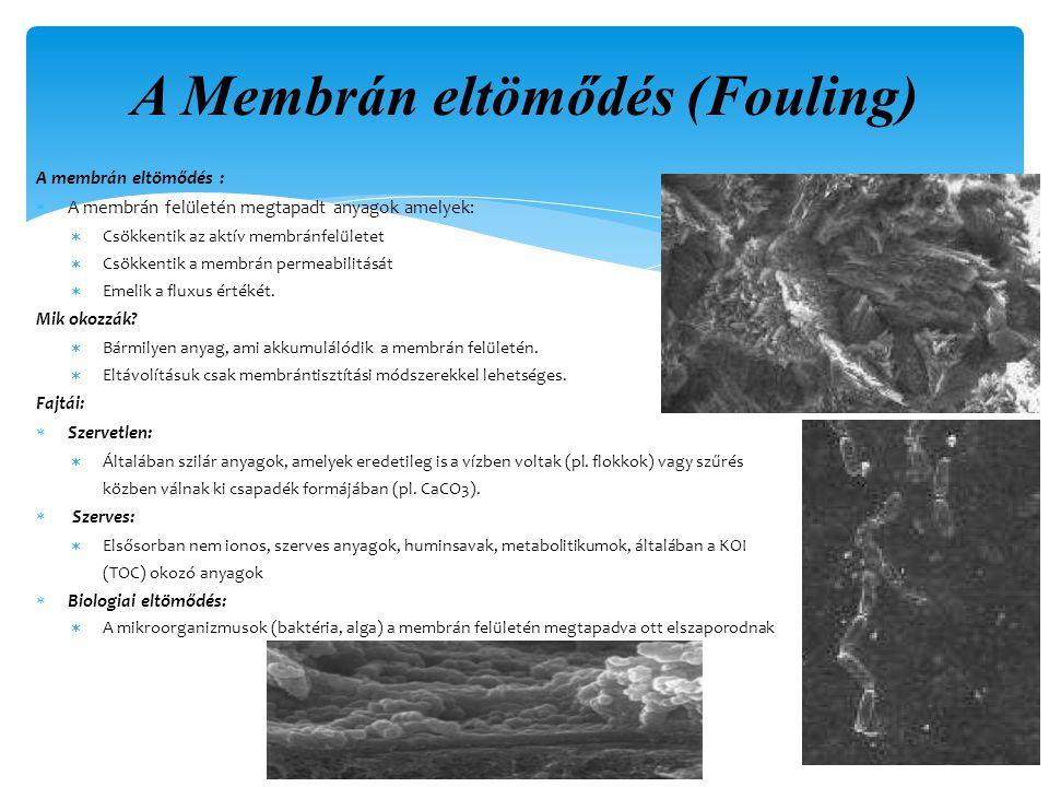 A membrán eltömődés :  A membrán felületén megtapadt anyagok amelyek:  Csökkentik az aktív membránfelületet  Csökkentik a membrán permeabilitását  Emelik a fluxus értékét.