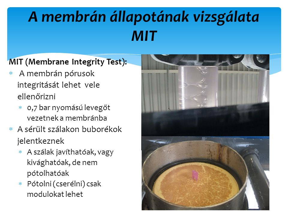MIT (Membrane Integrity Test):  A membrán pórusok integritását lehet vele ellenőrizni  0,7 bar nyomású levegőt vezetnek a membránba  A sérült szálakon buborékok jelentkeznek  A szálak javíthatóak, vagy kivághatóak, de nem pótolhatóak  Pótolni (cserélni) csak modulokat lehet 61 A membrán állapotának vizsgálata MIT