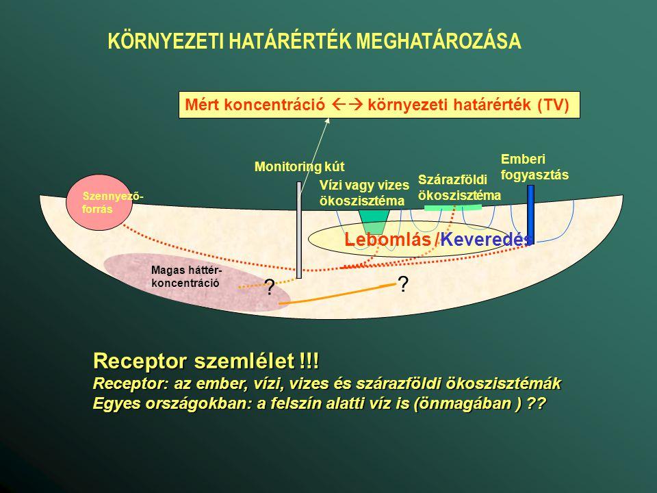 Anyagmérleg h 1, C 1 h 2, C 2 Szorpciós folyamatok advekció lebomlás átalakulás diffúzió és diszperzió advekció, be advekció, ki diszperzió, be diszperzió, ki h 3, C 3