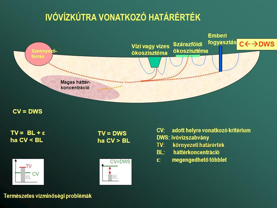 CV = DF*EQS/(1-AF) Magas háttér- koncentráció Emberi fogyasztás Vízi vagy vizes ökoszisztéma Szárazföldi ökoszisztéma Monitoring kút Szennyező- forrás C  CV DF AF KÖRNYEZETI HATÁRÉRTÉK A VÍZFOLYÁS KÖZELÉBEN CV: adott helyre vonatkozó kritérium EQS: FAVÖKO-ra vonatkozó ökotoxikológiai határérték AF: lebomlási faktor (< 1) DF: hígítási faktor (>1) (a nem szennyezett víz hatása) BL CV