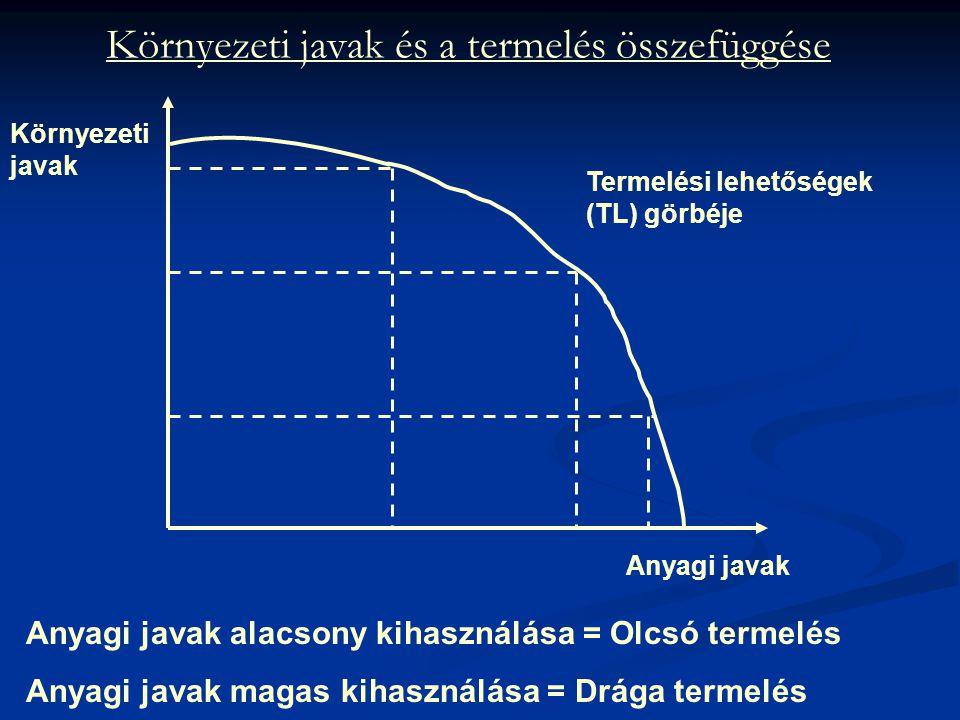 Környezeti javak és a termelés összefüggése Anyagi javak alacsony kihasználása = Olcsó termelés Anyagi javak magas kihasználása = Drága termelés Terme