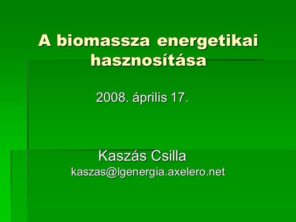 A biomassza energetikai hasznosítása 2008. április 17. Kaszás Csilla kaszas@lgenergia.axelero.net