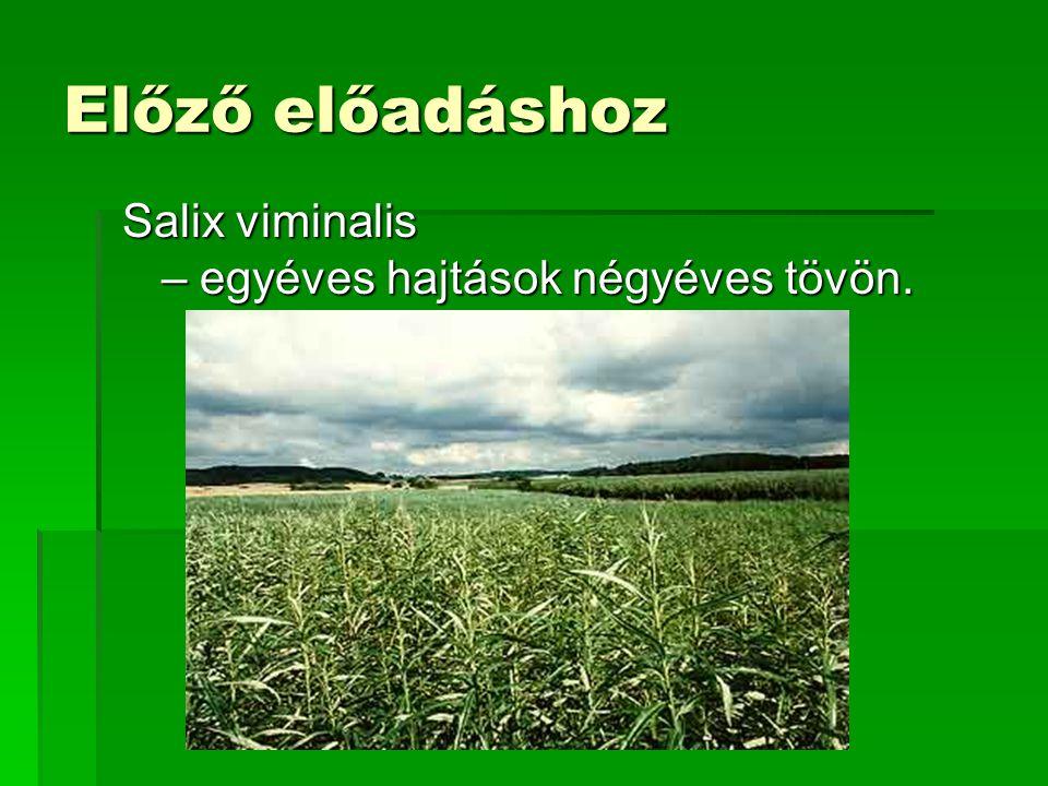 Gázösszetétel  Környezeti levegő (5 MJ/m3)  CO: 16 %(V/V)  H2: 24 %(V/V)  CH4: 2 %(V/V)  CO2: 16 %(V/V)  N2: 42 %(V/V)  Tiszta O2 (10 MJ/m3)  CO: 28 %(V/V)  H2: 41 %(V/V)  CH4: 3 %(V/V)  CO2 28 %(V/V)