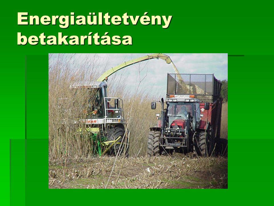 RENEXPO Nemzetközi kiállítás és konferencia – A megújuló iparágak seregszemléje – – A megújuló iparágak seregszemléje –2008.04.24-26.