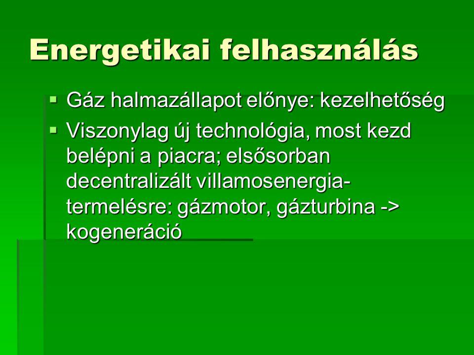 Energetikai felhasználás  Gáz halmazállapot előnye: kezelhetőség  Viszonylag új technológia, most kezd belépni a piacra; elsősorban decentralizált v