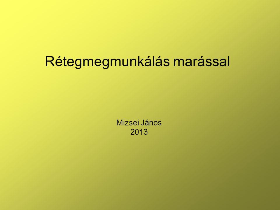 Mizsei János 2013 Rétegmegmunkálás marással