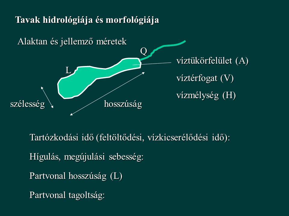 BELSŐ TERHELÉS BELSŐ TERHELÉS P be = L K + L B (KÜLSŐ + BELSŐ P TERHELÉS)P be = L K + L B (KÜLSŐ + BELSŐ P TERHELÉS) MÓDOSÍTOTT VOLLENWEIDERMÓDOSÍTOTT VOLLENWEIDER L K  ÖP (vs-ből)  VÉGES ÉRTÉK (L B ), NEM ZÉRUS (RÖVID TÁV)L K  ÖP (vs-ből)  VÉGES ÉRTÉK (L B ), NEM ZÉRUS (RÖVID TÁV) ÜLEDÉK FELÚJULÁS (HOSSZÚ TÁV)ÜLEDÉK FELÚJULÁS (HOSSZÚ TÁV)