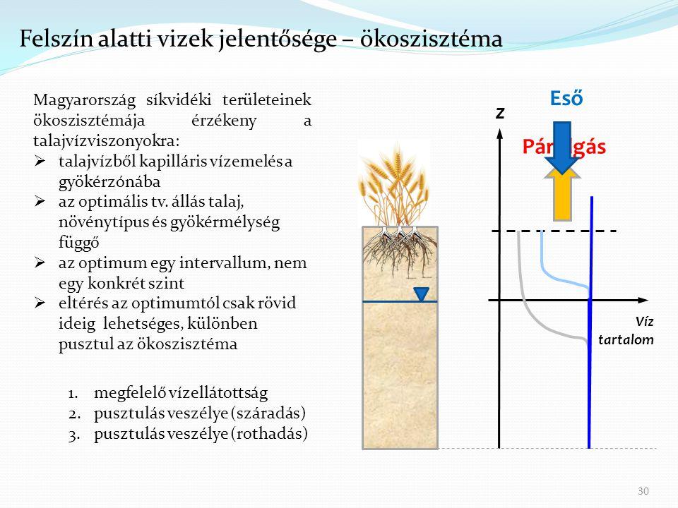 30 Víz tartalom z Párolgás Eső 1.megfelelő vízellátottság 2.pusztulás veszélye (száradás) 3.pusztulás veszélye (rothadás) Magyarország síkvidéki területeinek ökoszisztémája érzékeny a talajvízviszonyokra:  talajvízből kapilláris vízemelés a gyökérzónába  az optimális tv.