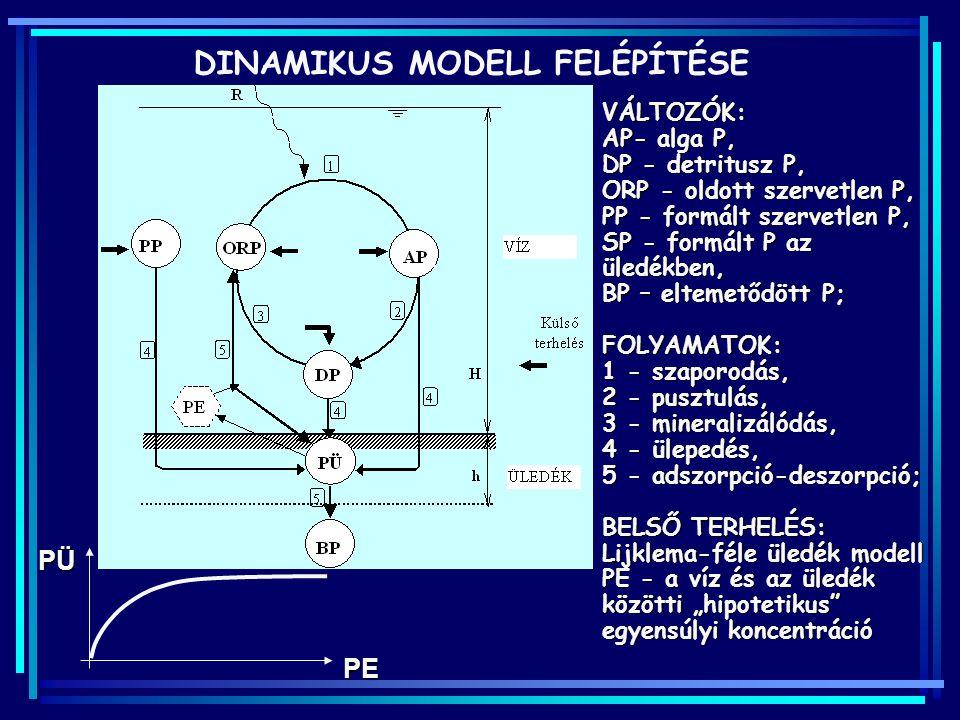 DINAMIKUS MODELL FELÉPÍTÉSE VÁLTOZÓK: AP- alga P, DP - detritusz P, ORP - oldott szervetlen P, PP - formált szervetlen P, SP - formált P az üledékben,