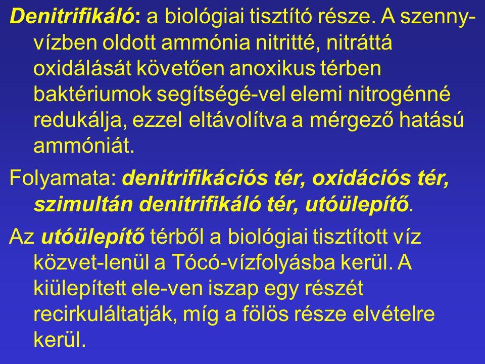 Denitrifikáló: a biológiai tisztító része. A szenny- vízben oldott ammónia nitritté, nitráttá oxidálását követően anoxikus térben baktériumok segítség