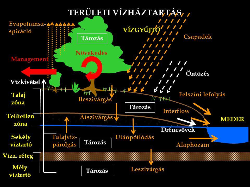TERÜLETI VÍZHÁZTARTÁS Talaj zóna Sekély víztartó Telítetlen zóna Vízz.