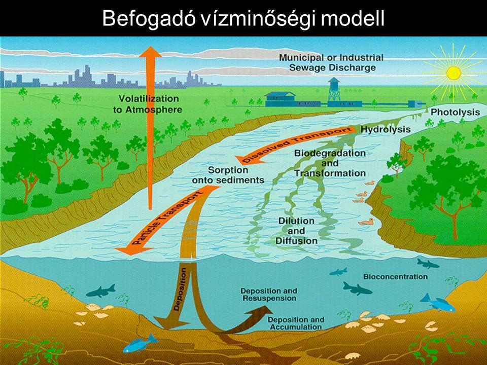 Terhelésmodellek LP: összevont, DP: osztott paraméterű modell H: hidrológia, E: erózió, N: tápanyagok, P: peszticidek