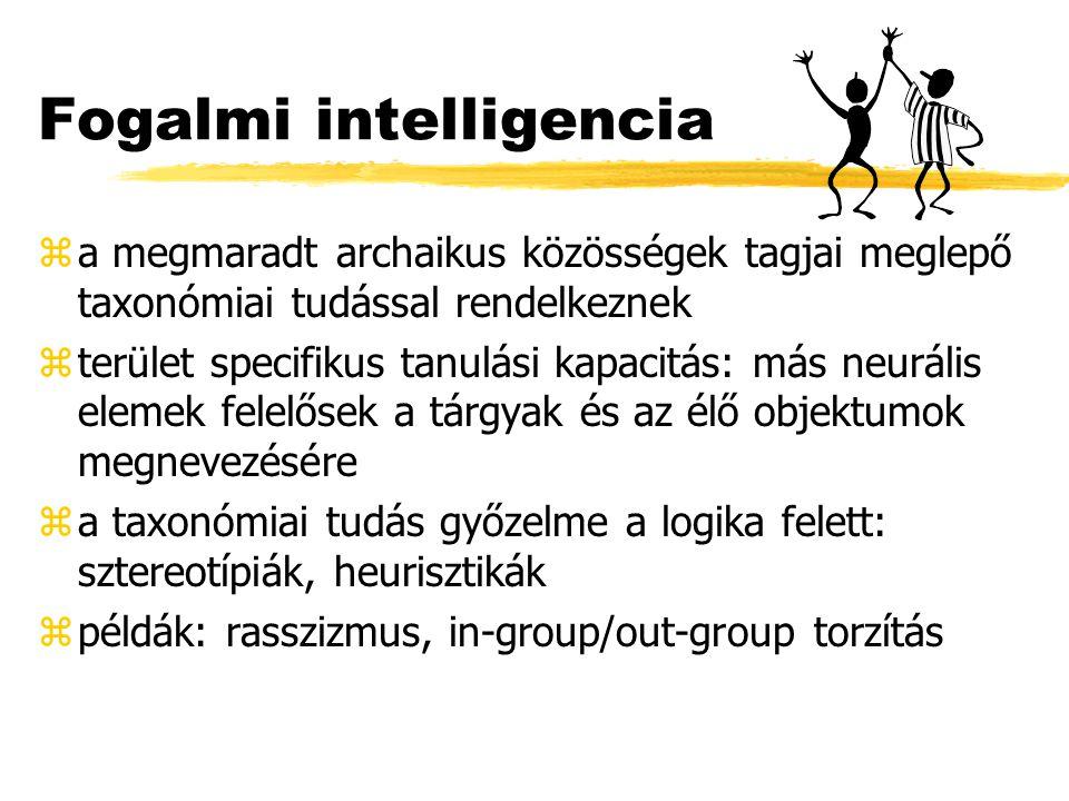 Fogalmi intelligencia za megmaradt archaikus közösségek tagjai meglepő taxonómiai tudással rendelkeznek zterület specifikus tanulási kapacitás: más neurális elemek felelősek a tárgyak és az élő objektumok megnevezésére za taxonómiai tudás győzelme a logika felett: sztereotípiák, heurisztikák zpéldák: rasszizmus, in-group/out-group torzítás
