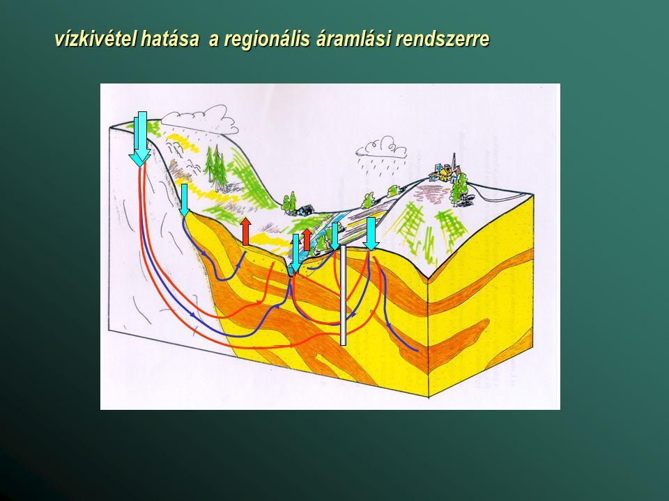 Magyarország síkvidéki területeinek ökoszisztémája érzékeny a talajvízviszonyokra Felszín alatti vizektől függő növényzet (szárazföldi ökoszisztémák)