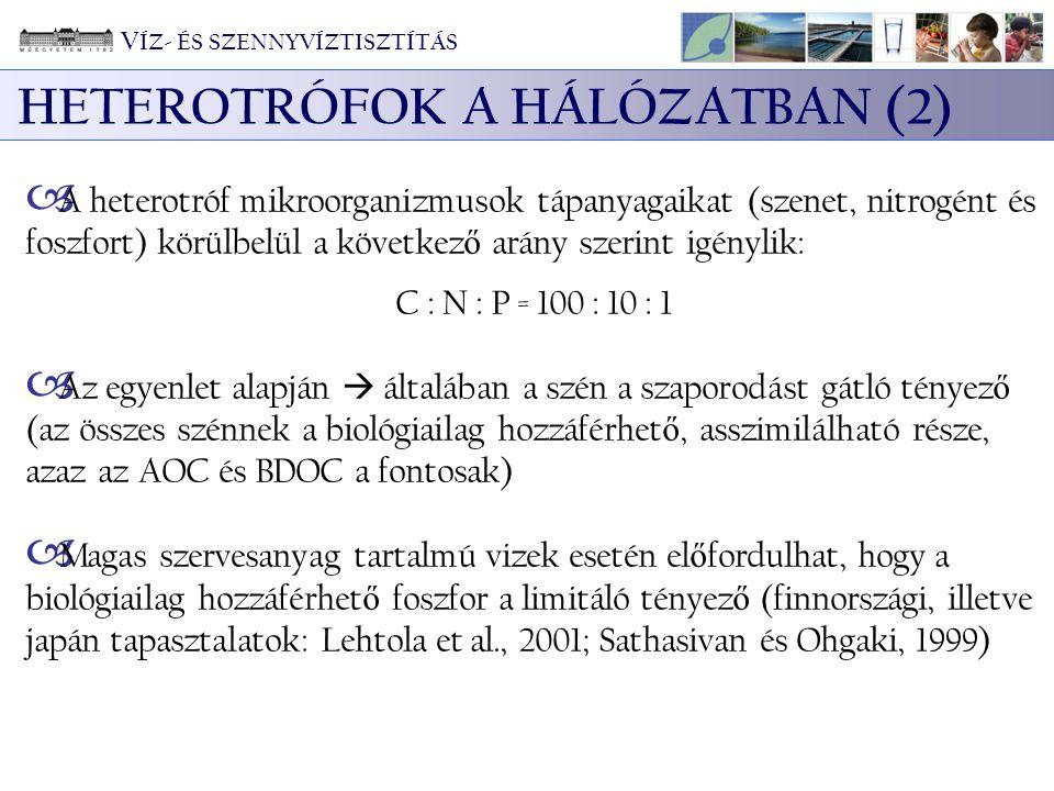 HETEROTRÓFOK A HÁLÓZATBAN (2)  A heterotróf mikroorganizmusok tápanyagaikat (szenet, nitrogént és foszfort) körülbelül a következ ő arány szerint igé