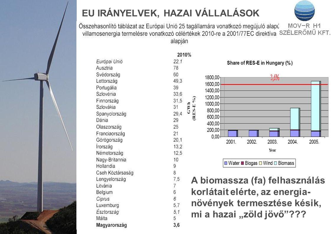 """EU IRÁNYELVEK, HAZAI VÁLLALÁSOK A biomassza (fa) felhasználás korlátait elérte, az energia- növények termesztése késik, mi a hazai """"zöld jövő""""???"""