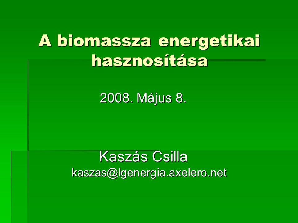 A biomassza energetikai hasznosítása 2008. Május 8. Kaszás Csilla kaszas@lgenergia.axelero.net