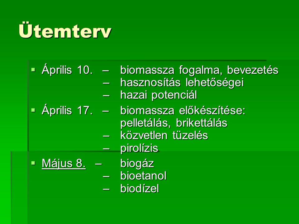 Mezőgazdasági alapanyagokra épülő biogáz erőművek Magyarországon  Nyírbátor: 2002.