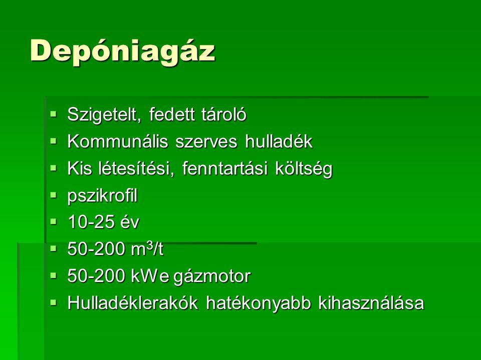 Depóniagáz  Szigetelt, fedett tároló  Kommunális szerves hulladék  Kis létesítési, fenntartási költség  pszikrofil  10-25 év  50-200 m 3 /t  50