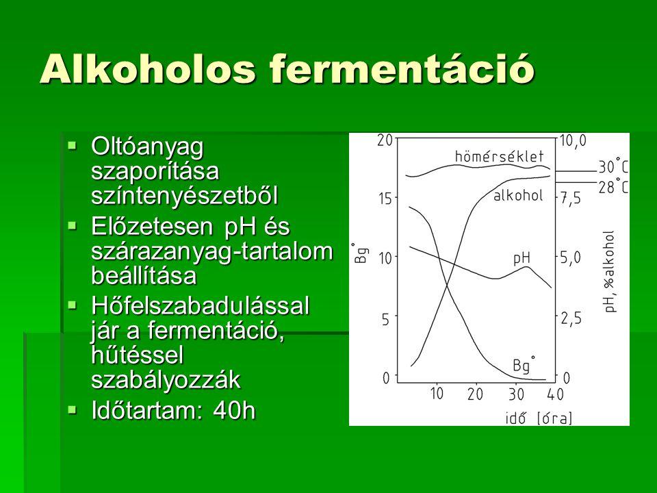 Alkoholos fermentáció  Oltóanyag szaporítása színtenyészetből  Előzetesen pH és szárazanyag-tartalom beállítása  Hőfelszabadulással jár a fermentác