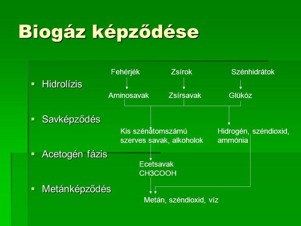 Biogáz képződése  Hidrolízis  Savképződés  Acetogén fázis  Metánképződés Fehérjék ZsírokSzénhidrátok AminosavakZsírsavakGlükóz Kis szénatomszámú s