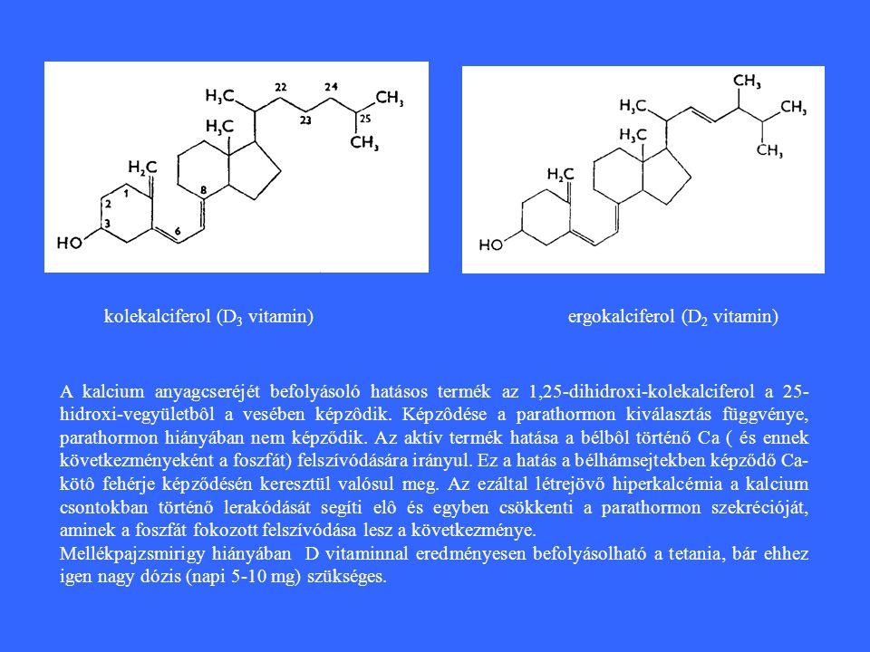 kolekalciferol (D 3 vitamin)ergokalciferol (D 2 vitamin) A kalcium anyagcseréjét befolyásoló hatásos termék az 1,25-dihidroxi-kolekalciferol a 25- hidroxi-vegyületbôl a vesében képzôdik.